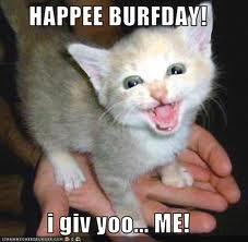 HAPPEE BURFDAY kitteh